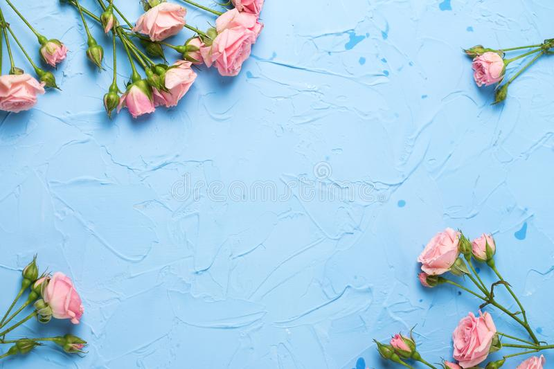 Frame from pink roses flowers on light blue textured background stock photo