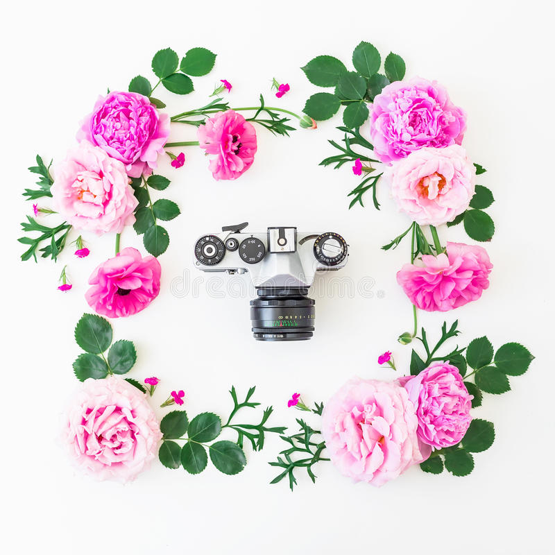 Frame of pink roses and old retro camera on white background. Floral lifestyle composition. Flat lay, top view. Frame of pink roses and old retro camera on stock photos