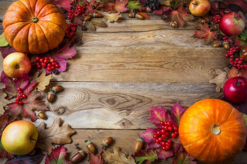 Frame of pumpkins, apples, acorns, berries and fall leaves on wooden background royalty free stock photography