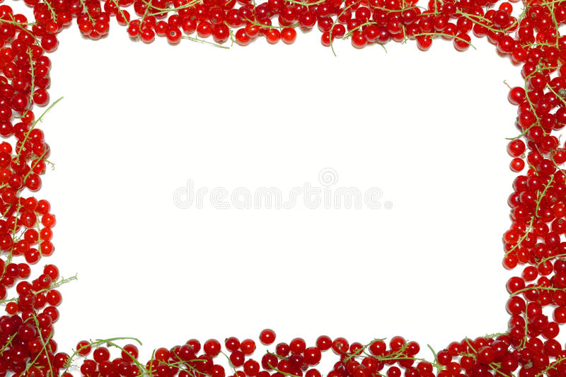 Frame with red currants and blueberries stock images
