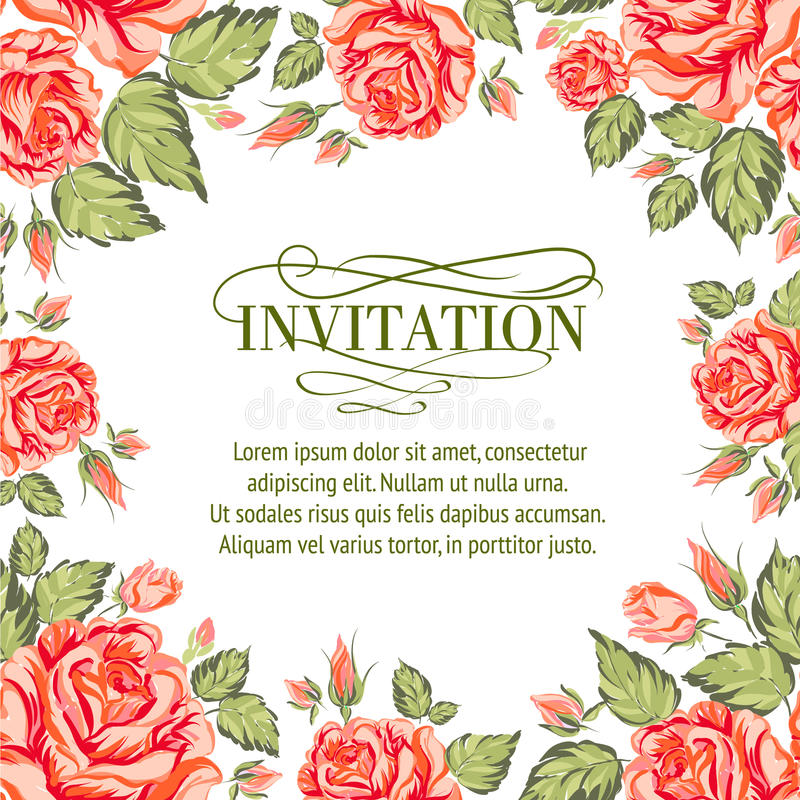 Frame of red roses on a white background vector illustration