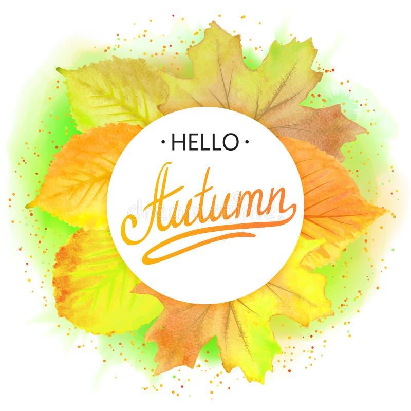 Frame redondo outonal Grinalda das folhas de outono Fundo com bonito Caia Elementos do projeto Vetor ilustração do vetor