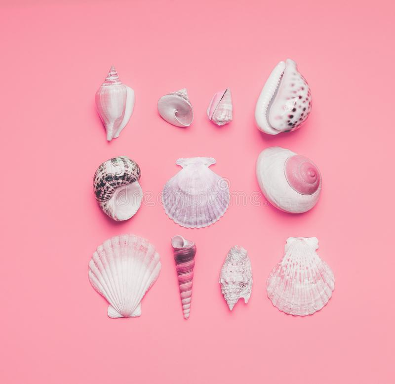 Frame of sea shells and tropical leaves on pastel pink background, top view.  Creative layout. Flat lay. Summer concept stock photo