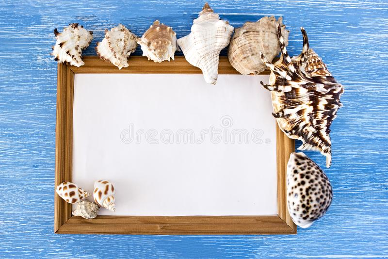 Frame and seashells on a blue wooden background stock image