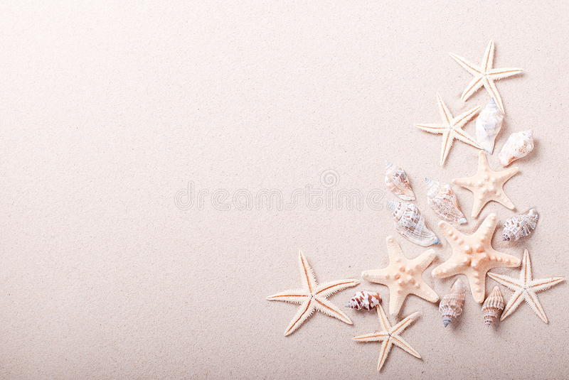 Frame of seashells on the sand royalty free stock photography