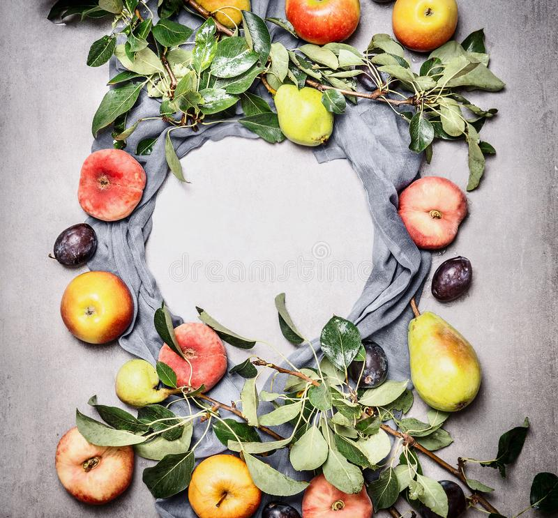 Frame of seasonal organic fruits from garden: apples, pears, peaches, plums with leaves , top view. Flat lay. Healthy clean food. Concept. Copy space for your royalty free stock photos