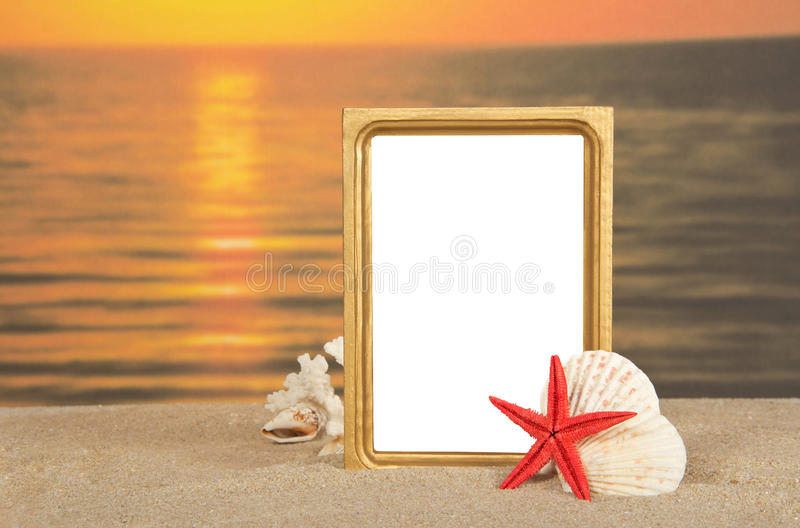 Frame and set of sea cockleshells. Frame, set of sea cockleshells on sand against a decline stock photos