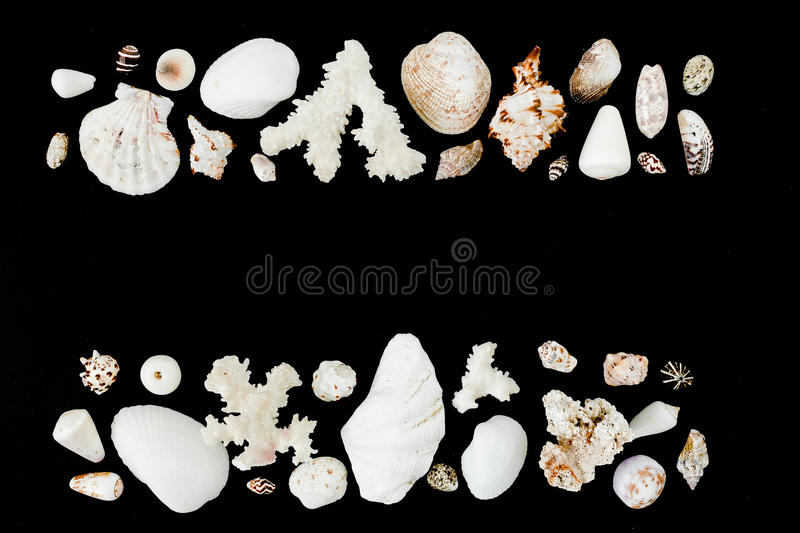 Frame of shells and corals isolated on black background. Flat lay. Top view. Ocean pattern. Shells and corals isolated on black background. Flat lay. Top view stock photography