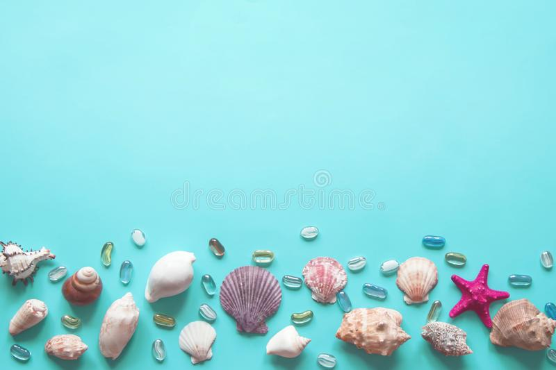 Frame of shells of various kinds on a blue background royalty free stock images