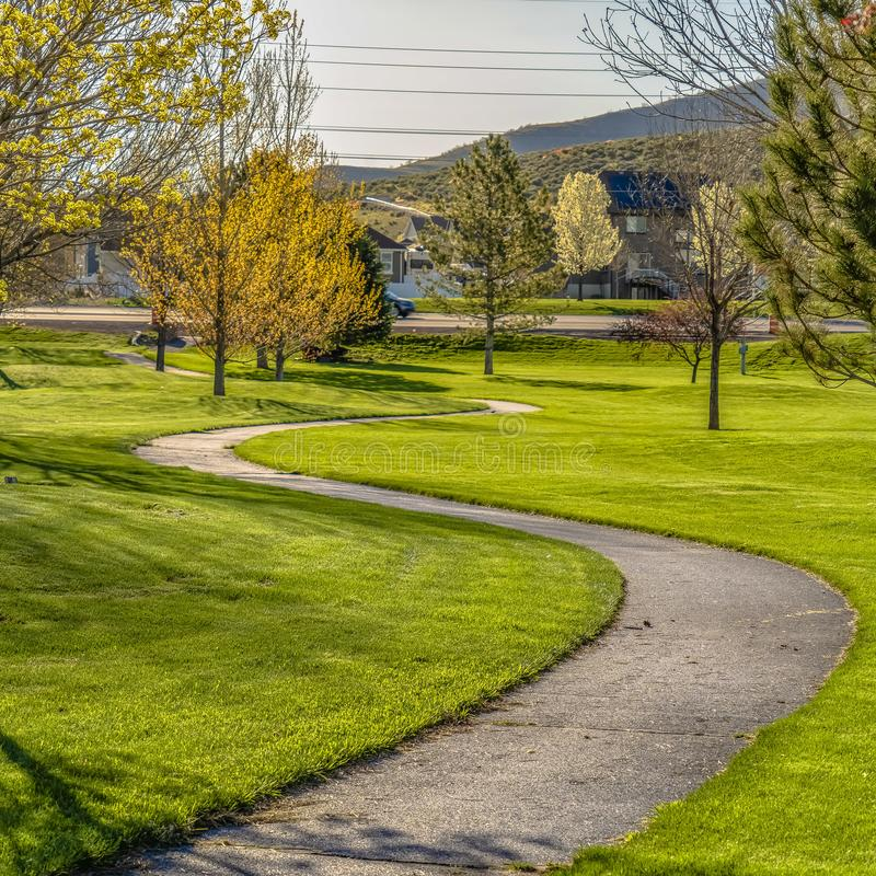 Frame Square Grassy terrain with a winding pathway and young trees viewed on a sunny day royalty free stock images