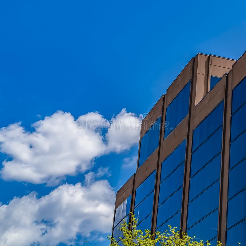 Frame Square Modern building with blue glass wall against blue sky with fluffy clouds. Luxuriant green leaves of trees can be seen in the foreground royalty free stock photos