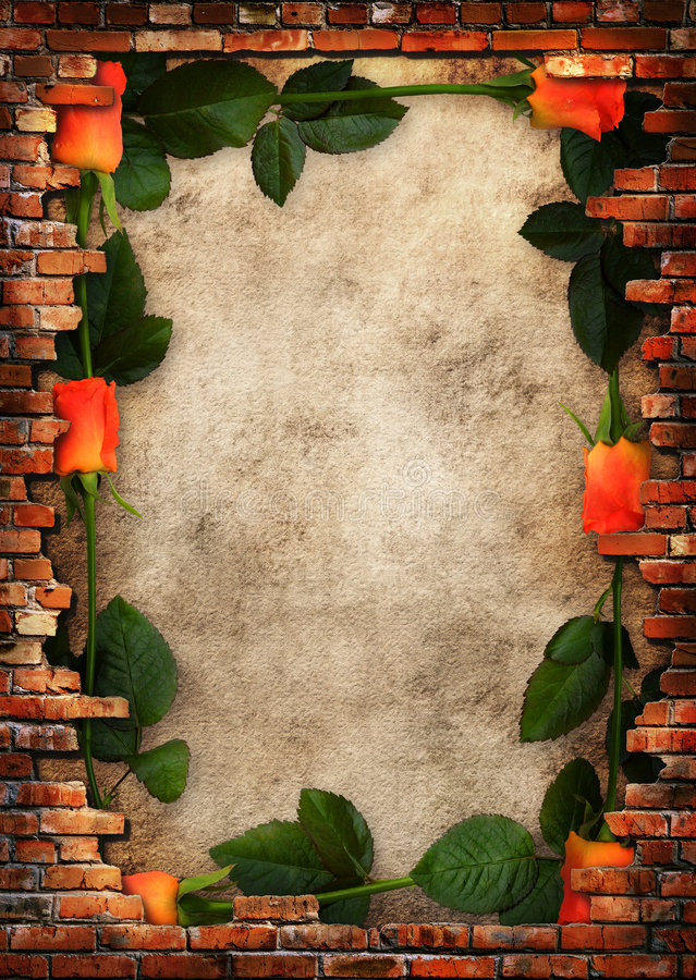 Frame sujo da parede de tijolo com rosas vermelhas imagem de stock