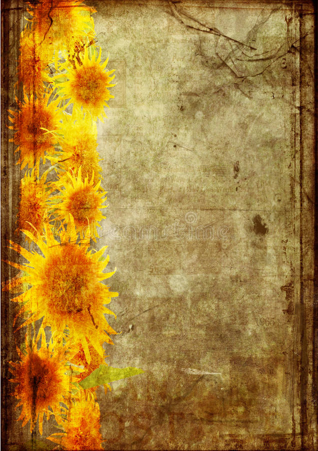 Download Frame From  Sunflower Grunge Stock Photo - Image: 17787104