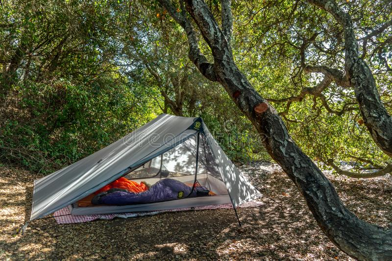 A-Frame tent set up in forested area stock photo