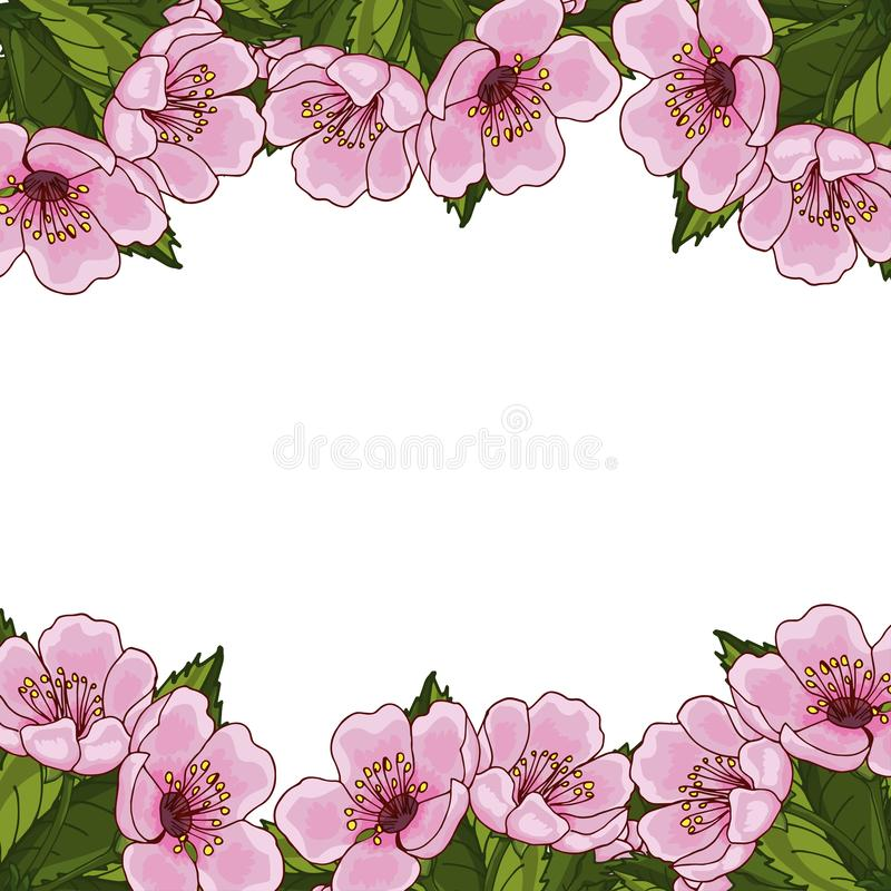 Frame for text with spring flowers of pink cherry, sakura, on a white background. Idea for design postcard, invitation, background vector illustration