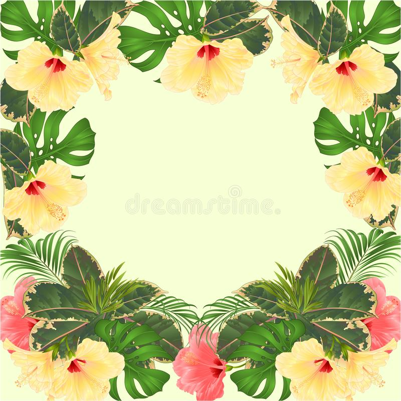 Frame tropical flowers floral arrangement, with pink and yellow hibiscus and palm,philodendron vintage vector illustration vector illustration
