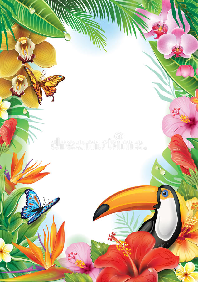Frame with tropical flowers and toucan vector illustration