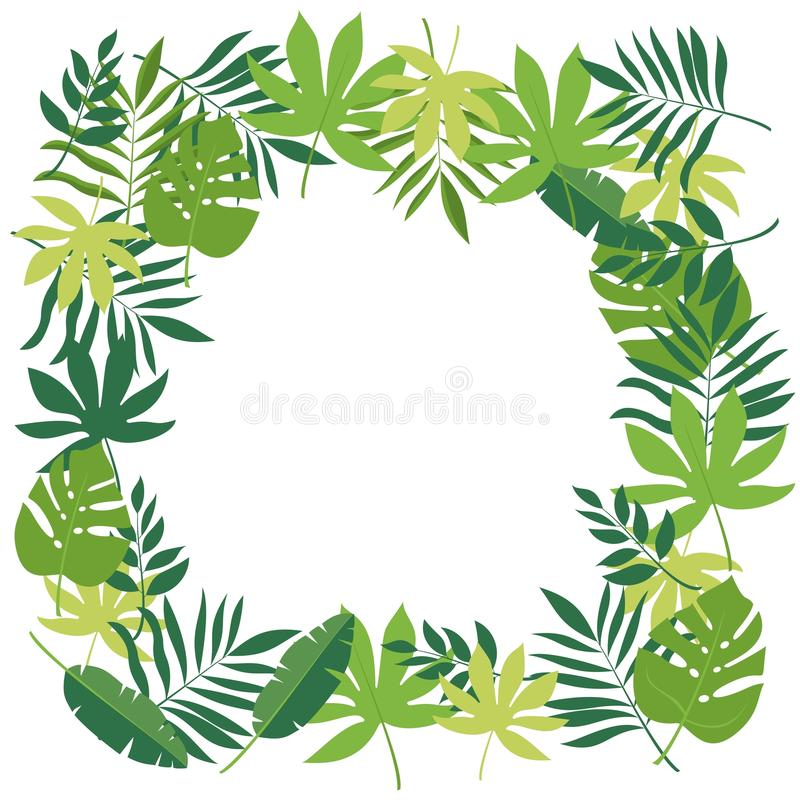 Frame with tropical leaves vector illustration