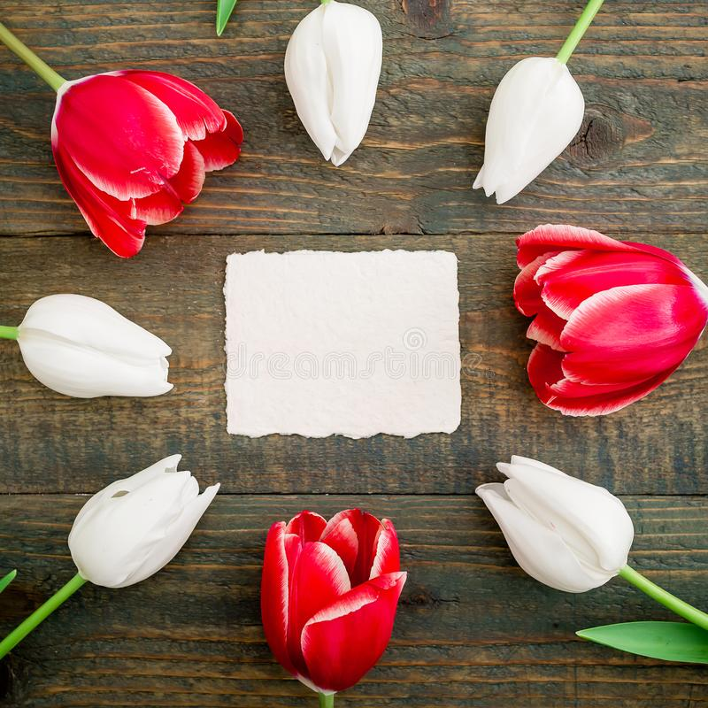 Frame of tulip flowers with paper card on wooden background. Flat lay stock photos