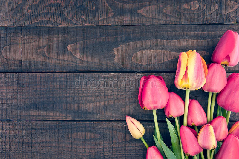 Frame of tulips on dark rustic wooden background. Spring flowers royalty free stock image