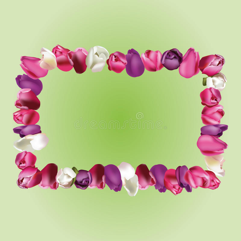 Frame with tulips vector illustration
