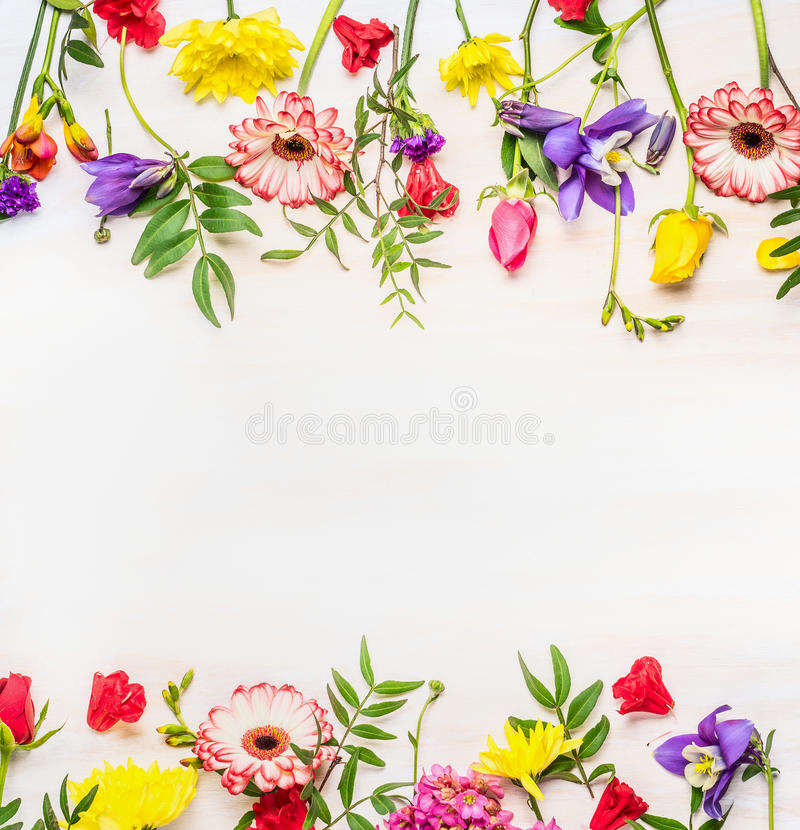 Frame from a variety of spring summer flowers, space for text stock images