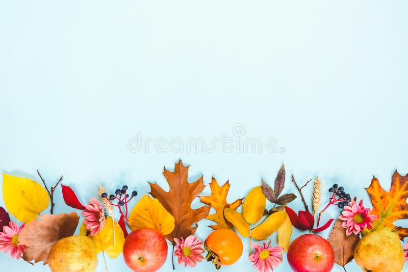 A frame of various colorful autumn fruits and leaves over light blue background.  stock photography