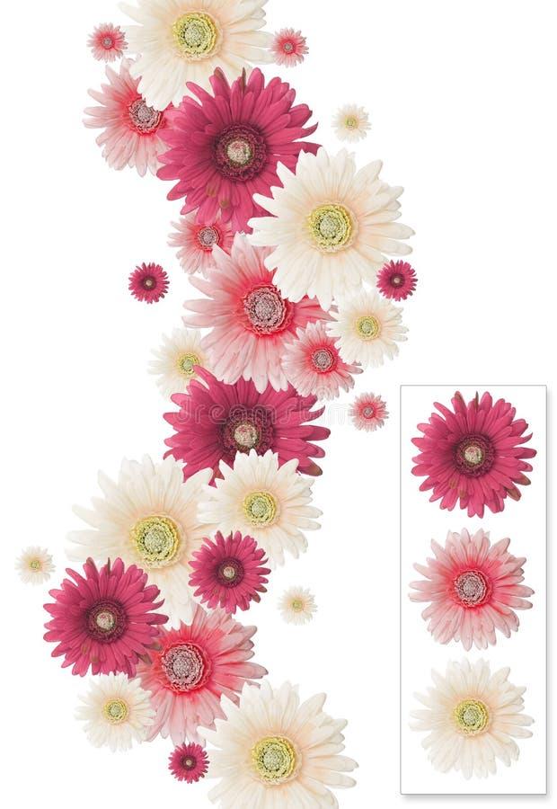 Frame vertical da flor imagens de stock