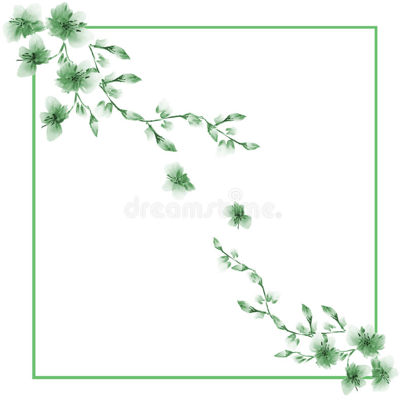 Frame watercolor with two corner ornaments of wild green flowers on a white background royalty free stock images