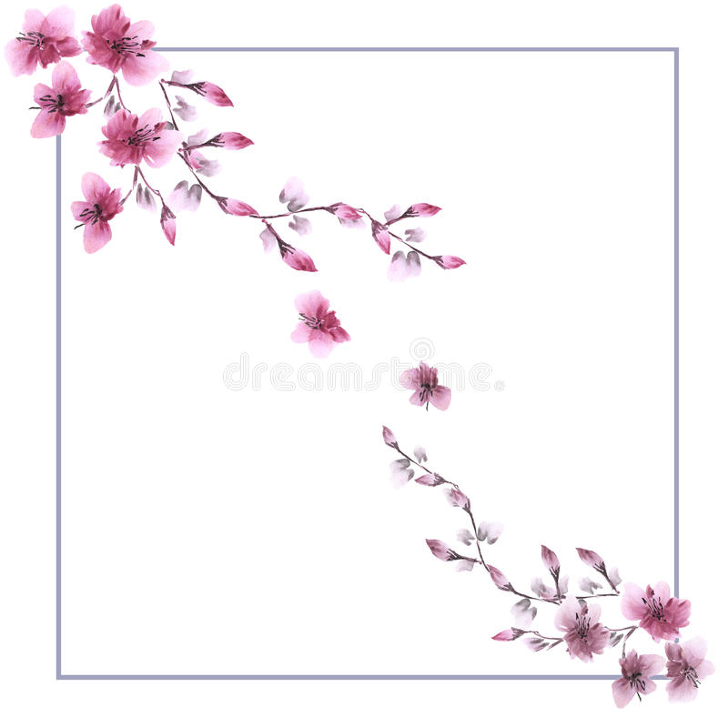 Frame watercolor with two corner ornaments of wild pink flowers on a white background royalty free stock photography