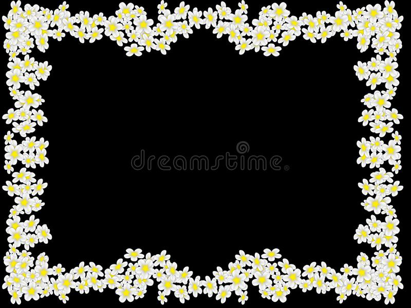 Frame from white flowers stock photography
