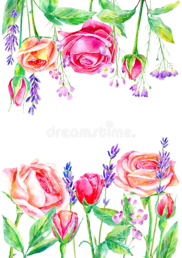 Frame of a wild flowers and roses branches.Floral wreath of a lavender. Border of a herbs.Watercolor hand drawn illustration.It can be used for greeting cards vector illustration