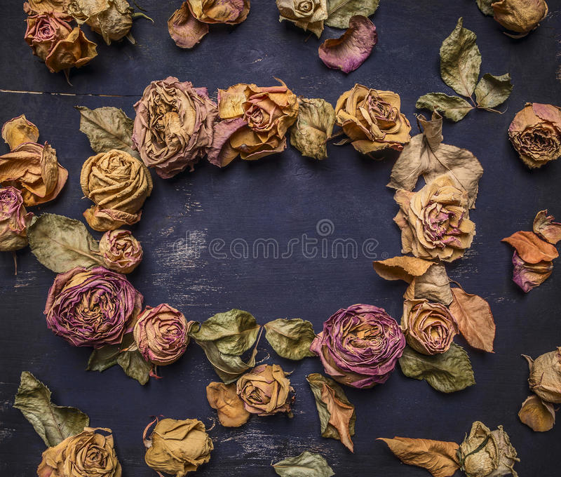 Frame with withered, dried roses with text area, vintage style on wooden rustic background top view royalty free stock photo