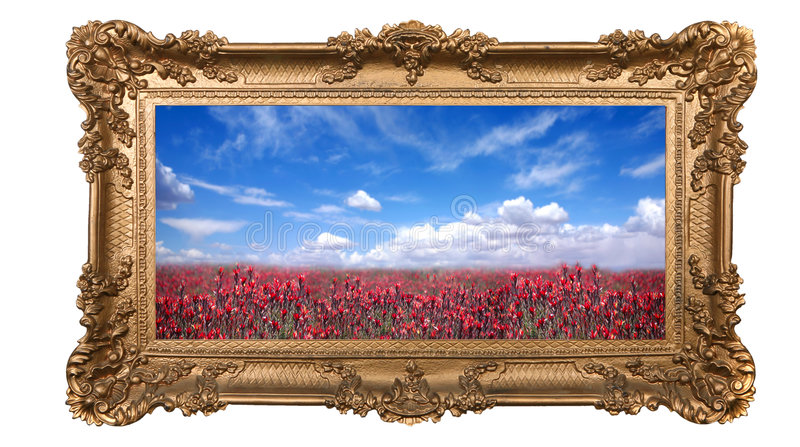 Framed Field Of Pretty Red Flowers And Beautiful S Royalty Free Stock Photo
