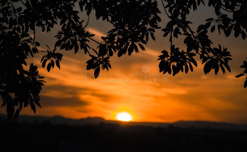 Framed sunset through the trees royalty free stock photography