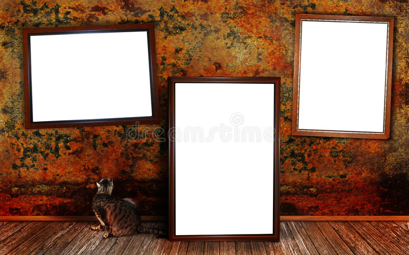 Frames. Three frames along a textured wall with wood flooring and a cat looking up at one of the frames. Concept for art show royalty free stock photos