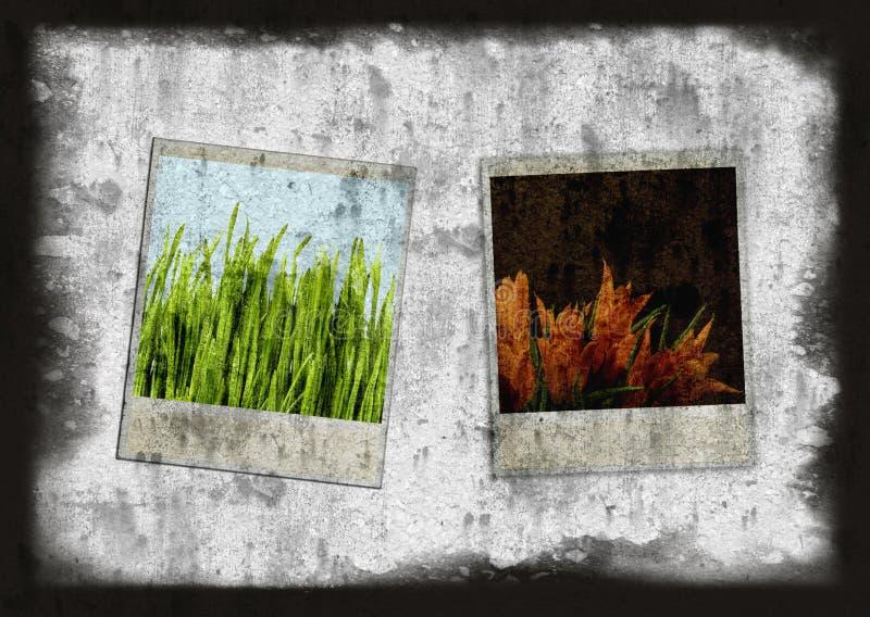 Frames da câmera do estilo velho ilustração royalty free