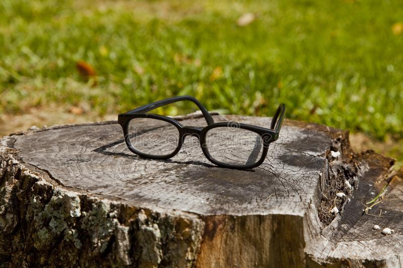 Frames Left Behind in the Forest stock images