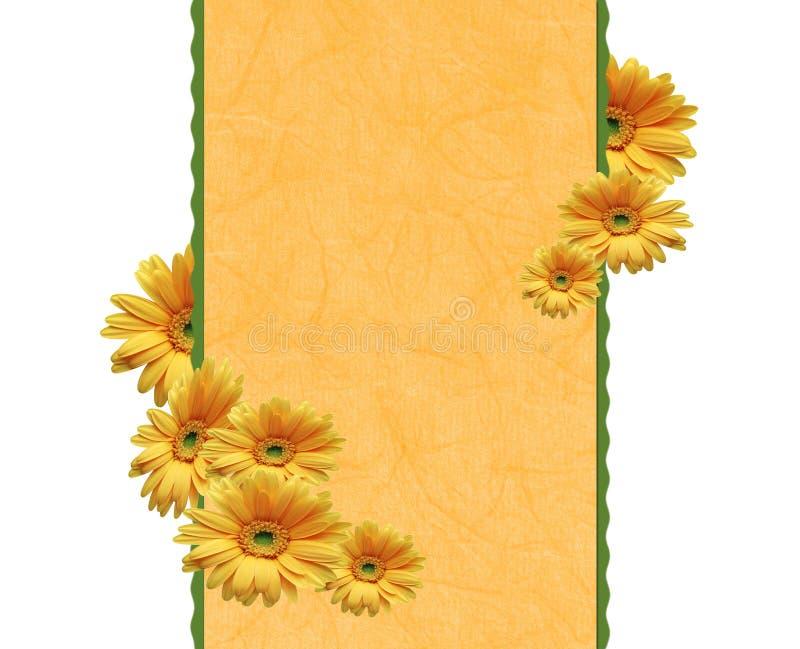 Framework with chrysanthemums vector illustration