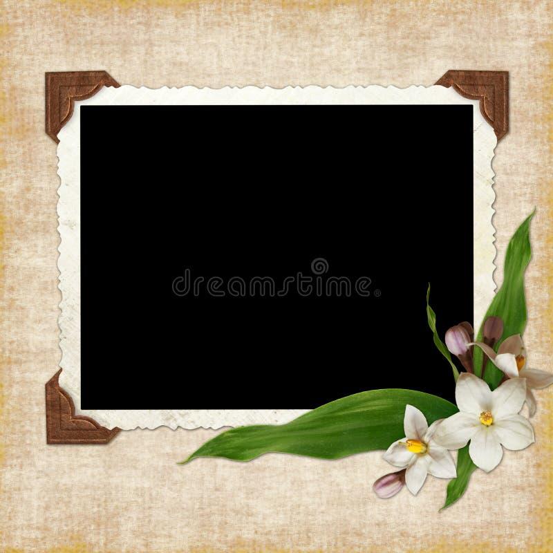 Framework for photo or congratulation vector illustration