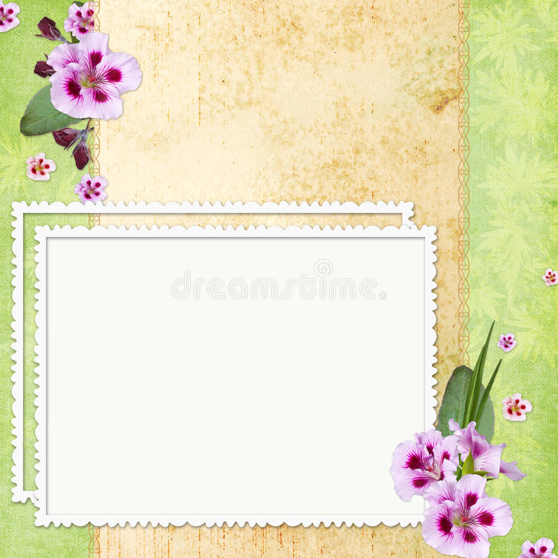 Framework For Photo Or Congratulation Royalty Free Stock Images