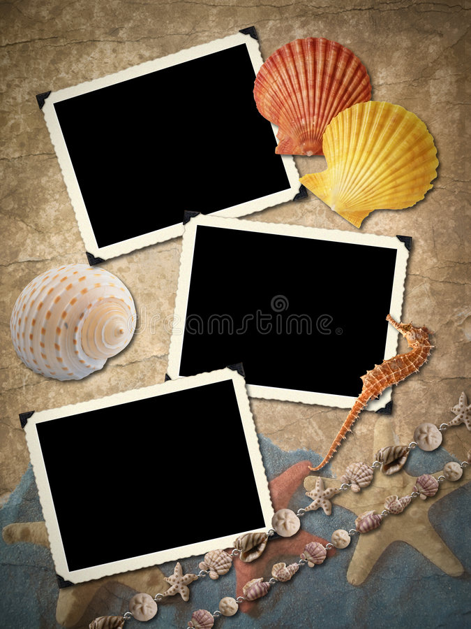 Frameworks for a photo, cockleshells. vector illustration