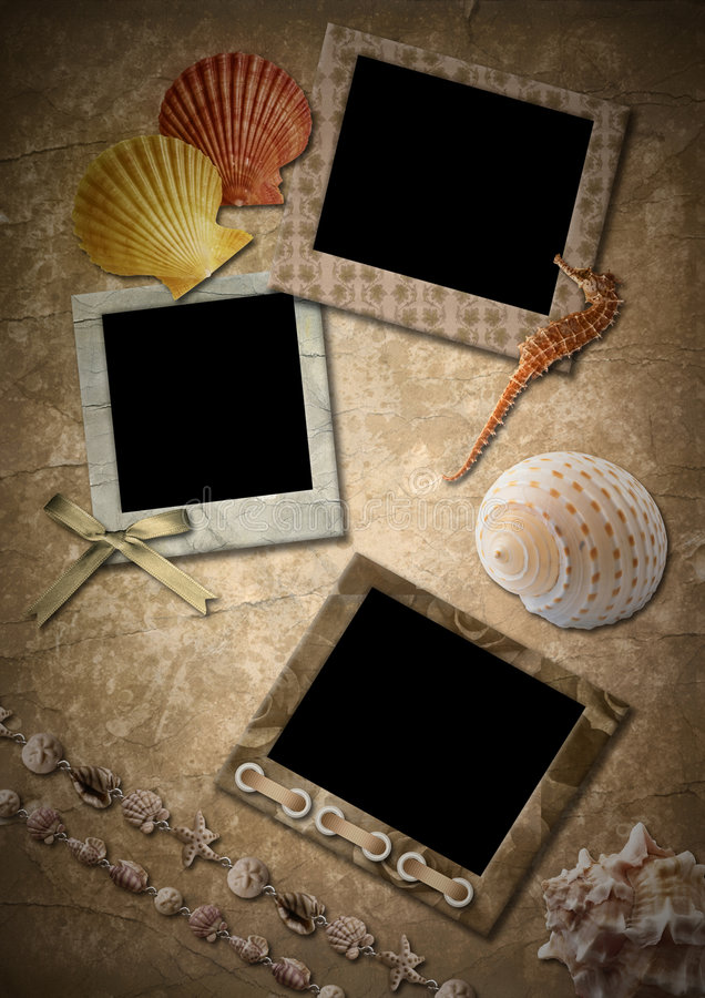 Frameworks, sea cockleshells. Retro. Frameworks for a photo in a retro style with sea cockleshells royalty free stock photography