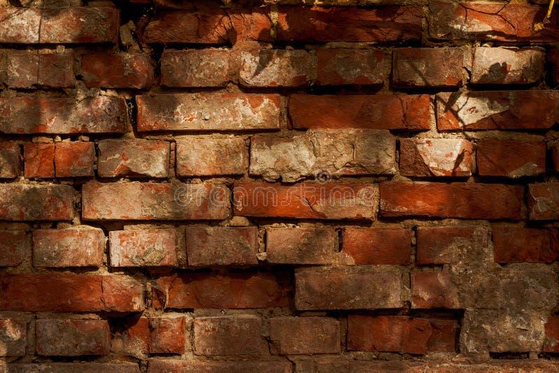 Frammento di vecchio fondo della parete del gesso fotografia stock libera da diritti