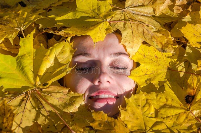 Framsida av en ung kvinna med härliga kanter för en flicka med röd läppstift och målade snärtar som ligger i de gula lönnlöven i  fotografering för bildbyråer