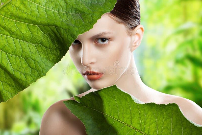 Framsida för ståendeskönhetkvinna Härlig modell Girl med perfekt ny ren hud Flickan med gräsplan lämnar royaltyfria foton