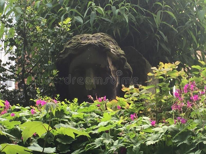 Framsida i skogen arkivbild