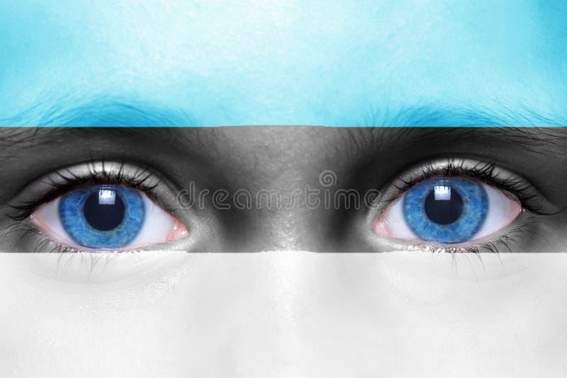 framsida med den estonian flaggan royaltyfri fotografi