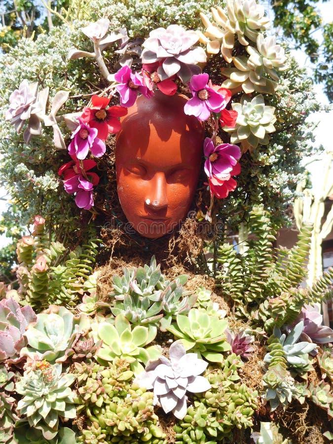 Framsida som inramas av blommor royaltyfri fotografi