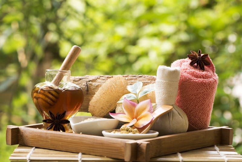 Framsidamaskering med Thanaka och honung, brunnsortbehandlingar på naturlig bakgrund royaltyfri foto